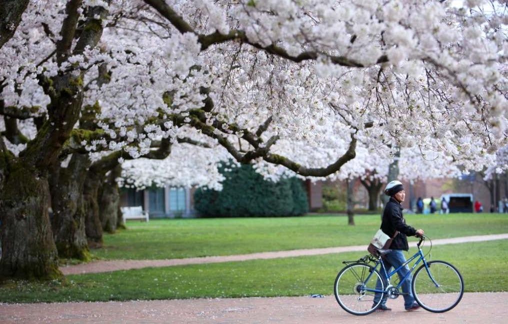 Du lịch nước Mỹ mùa xuân