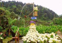 Cảnh đẹp núi Dương Minh